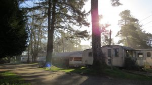 Easter Egg Hunt @ Sou'wester Lodge and Vintage Travel Trailer Resort | Seaview | Washington | United States