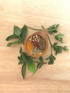 Spice Rack Remedies : DIY Kitchen Medicine for Common Ailments with Elyssia Maya Schaeffer