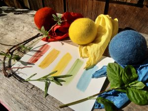 Real Red, True Blue & Fast Yellows: Using Ancient Natural Dyes to Create Lasting Beauty with instructor Iris Sullivan Daire