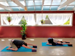 Restorative / Yin Yoga