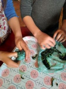 After-School Workshop: INDIGO STARS & FLOWERS with Iris Sullivan @ Sou'Wester Arts & Ecology Center